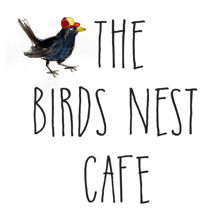 birdsnest square logo